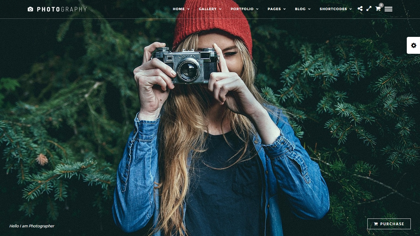 adaptive portfolio photographer wordpress themes