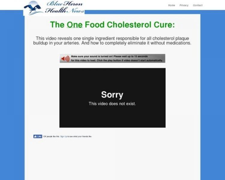 The Oxidized Cholesterol Strategy – Blue Heron Health News