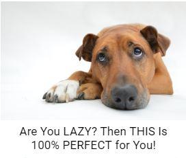 lazy deadbeat super affiliate