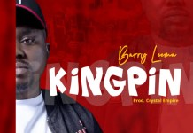 Barry leema -kingpin