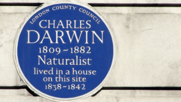 Charles Darwin Blue Plaque on Gower Street London WC1 | ProfJoeCain
