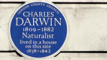 Charles Darwin Blue Plaque on Gower Street London WC1 | ProfJoeCain
