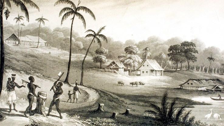 """Mibiri Creek, Demerara River | Mr Edmonstone's Wood Cutting Establishment"" from Thomas Staunton St. Clair, A Residence in the West Indies and America (London, 1834), vol. 2, facing p. 187."