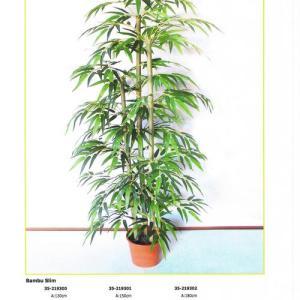 Bambu 1,30m 3 canas