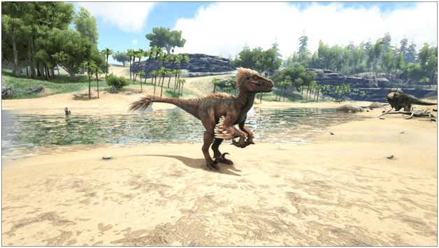 Ark Raptor Guide (Abilities, Taming, Food, Utilization