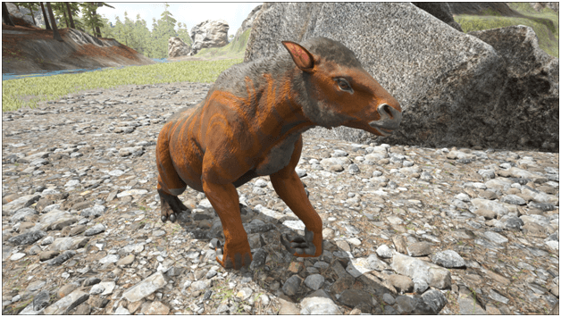 Ark Chalicotherium Guide Abilities Taming Food Saddle Breeding Drops Location Progametalk The daeodon has a large maw which it uses for fighting as well as eating the large quantities of meat that it needs to. ark chalicotherium guide abilities