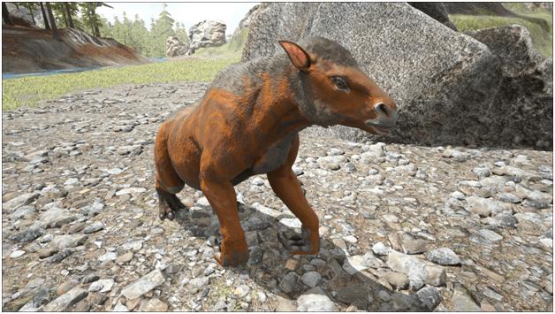Ark Chalicotherium