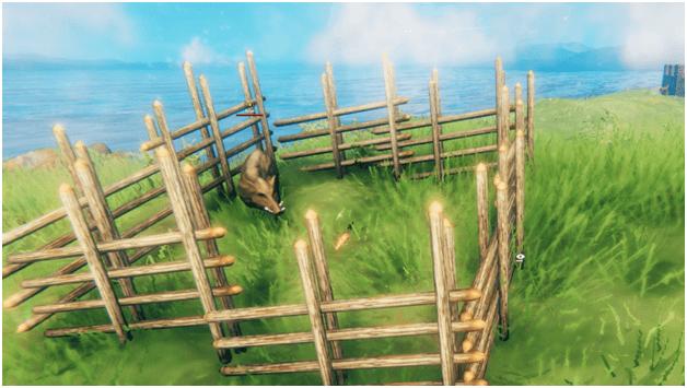 Valheim boar taming
