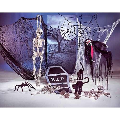Décoration pour Halloween - Squelette, zombie, araignée géantes, rat, chat noir...