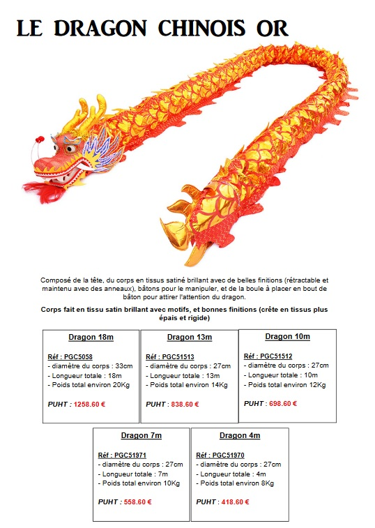 Pro-G Crea - Décoration dragon chinois