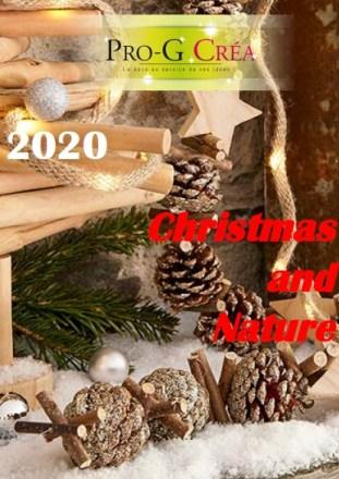 décoration de Noël et nature