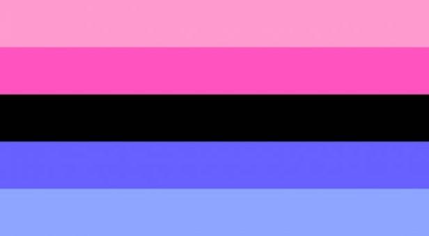 bandiera-omnisessuale