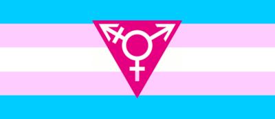 Transgender-flag-triangle