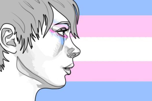 transgender_pride___flag_by_ash_not_ketchum-d93awzc