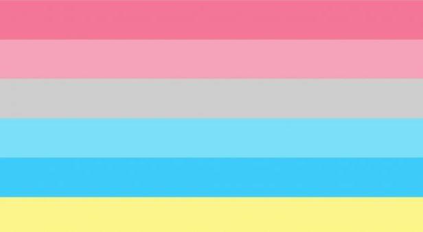 Bandiera Genderflux