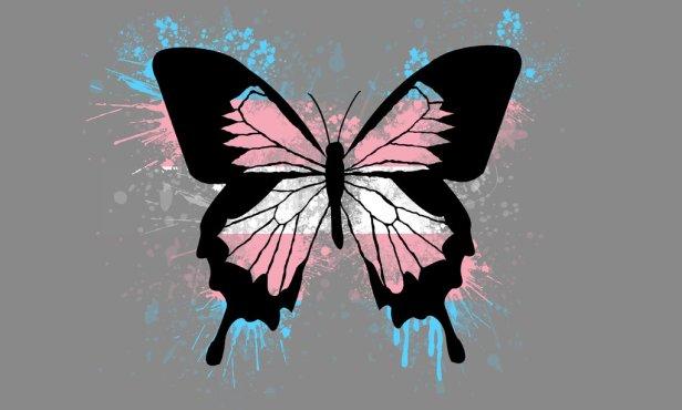 transgender_butterfly_pride_wallpaper_by_amybluee42-datv4zw