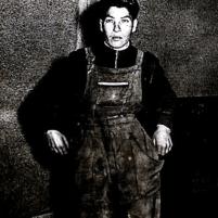 Vito D'Arpa