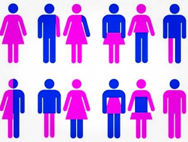 libertà dai ruoli di genere