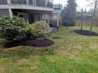 New gardens and clean-up