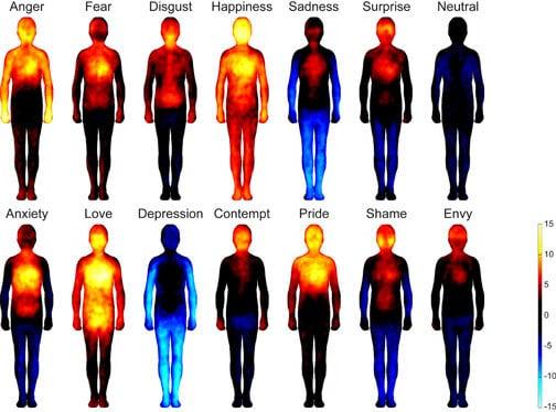 La importancia de las emociones en nuestra vida