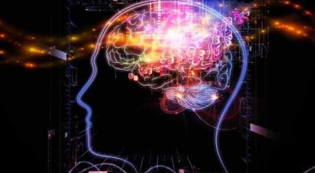 cerebro y meditación