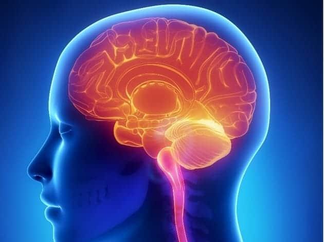 hemisferios cerebrales afectados por estrés