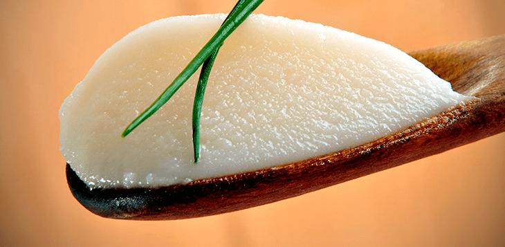 óleo de coco para diabéticos doutor rocha