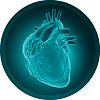 vita q10 combate o infarto
