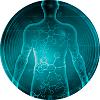 vita q10 aumenta a imunidade