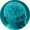 vita q10 traz benefícios para a memória