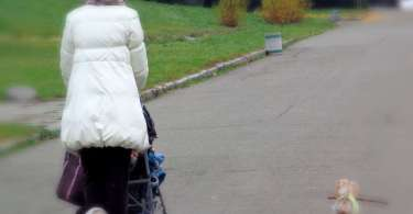 Know The Advantages of Dog Strollers For Your Pet