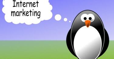 Should You Hire an Internet Marketing Expert?
