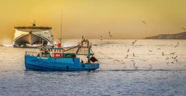 best fishing boat
