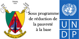 sous-programme-de-reduction-de-la-pauvrete-a-la-base