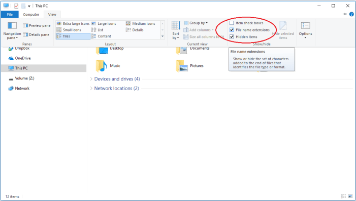 This picture shows how you can activate the checkbox for showing file extensions in Windows 10