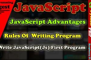 JavaScript(js)