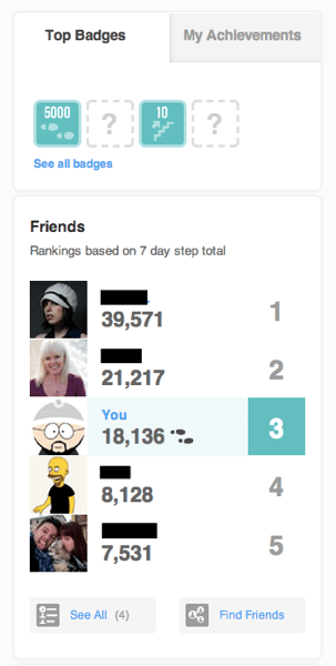 Fitbit Badges and Friends