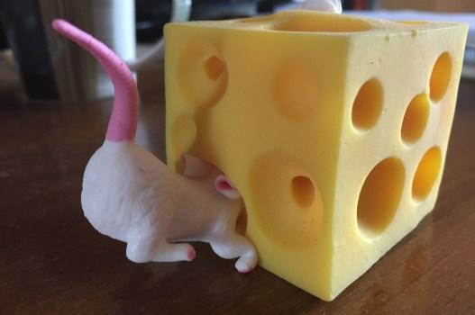W poszukiwaniu sera