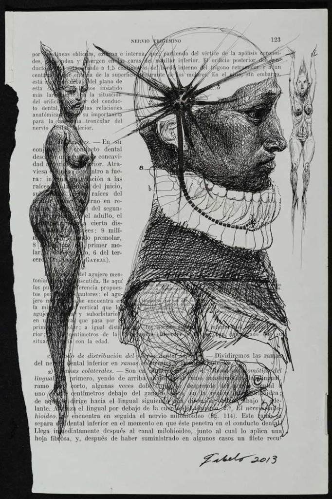 """Anatomía de Fabelo"""" es su primera muestra en un museo de EEUU.   Cuba+"""