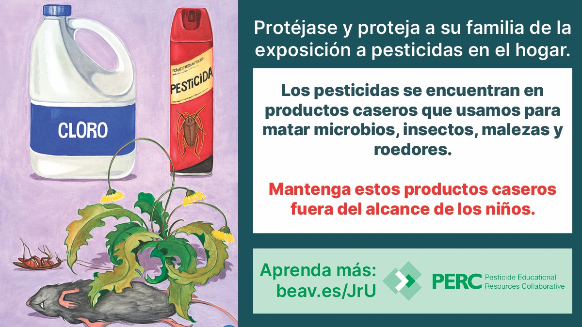 PERC Twitter_ES_11