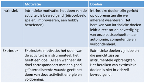 Intrinsieke en extrinsieke motivatie en doelen