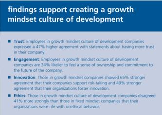 Mindsetonderzoek in bedrijven: sterke effecten van organisatiemindsets