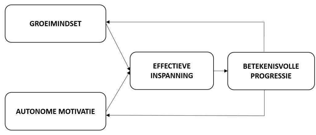 De groeimindset en intrinsieke motivatie dragen beide bij aan volharding