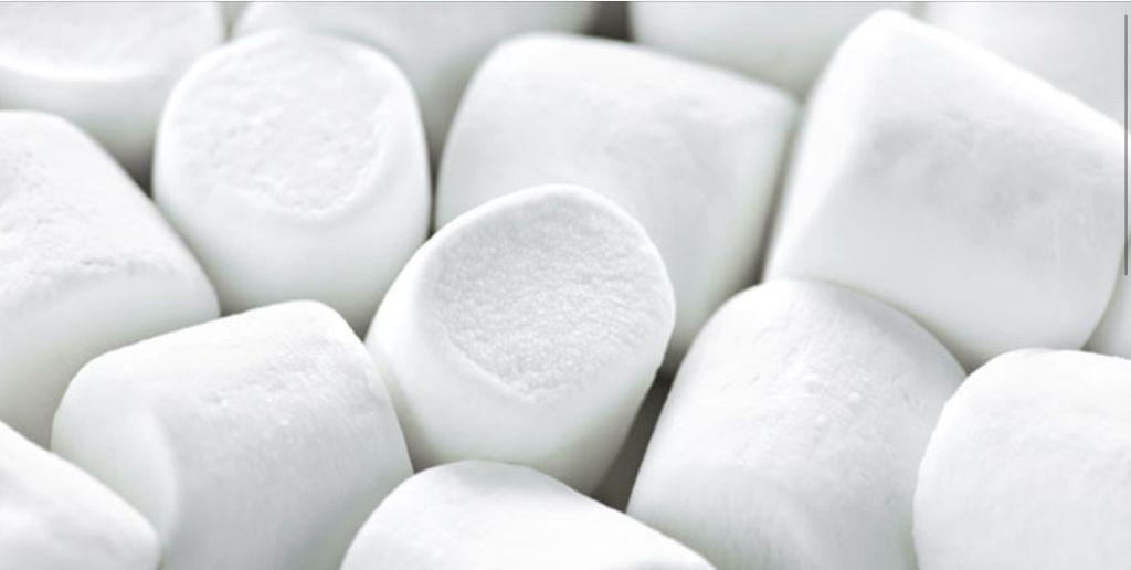 The Marshmallow Test door Walter Mischel