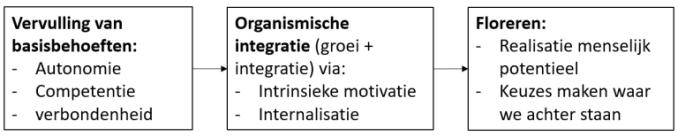 Organismische integratie (groei+integratie)