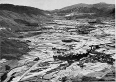 Sha Tin paddy fields 1960