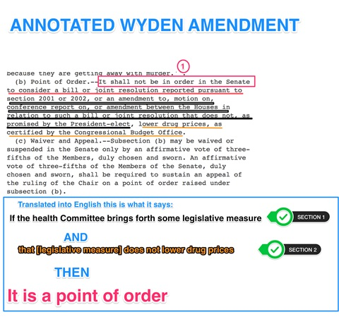 wyden-amendment-2