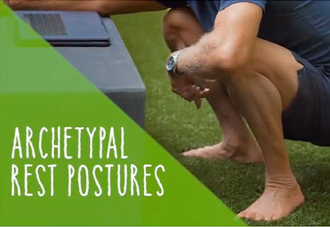 Ancestral Resting Positions: Video Guide