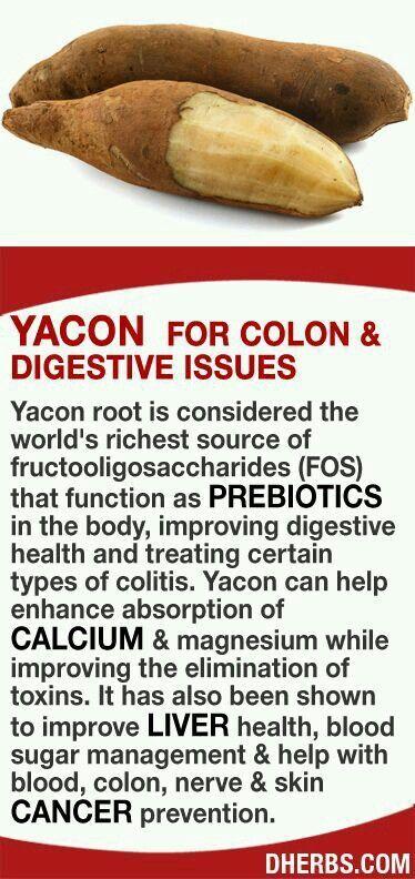 yacon fitness