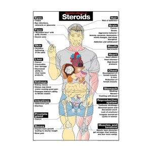 The Truth About Steroids what they Do and How They Work